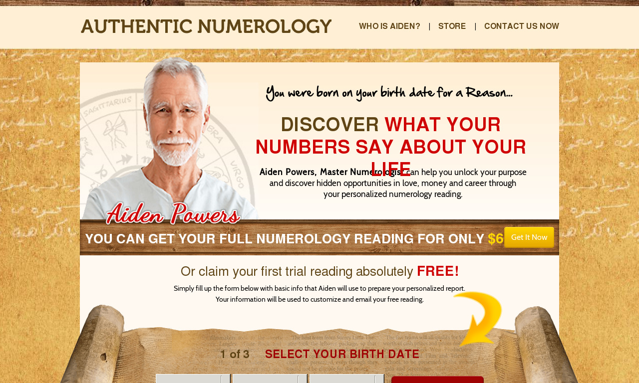 Authentic Numerology In-Depth Reading